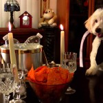 A Dog preps for a date and a Dad comes home.
